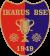 ikarus-logo-kicsi